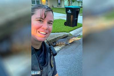 Must-see: Florida police officer's selfie with alligator goes viral